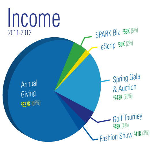 pieChart-2013-Income