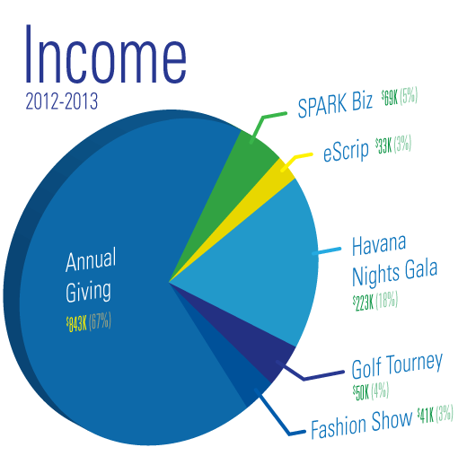 pieChart-Income-2013